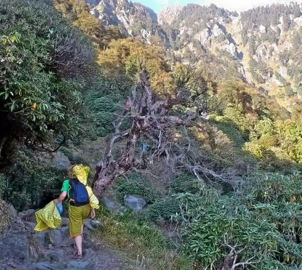 Hiking Tour to Triund from Dharamshala
