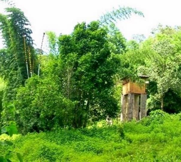 Kariyan Chola National Park