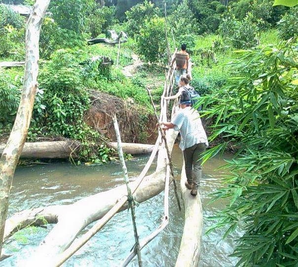 Jungle Trekking Tour in Community Protected Forest at Banlung