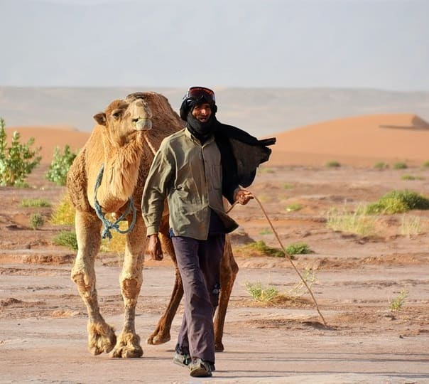 3 Nights/4 Days Camel Safari and Camping Tour