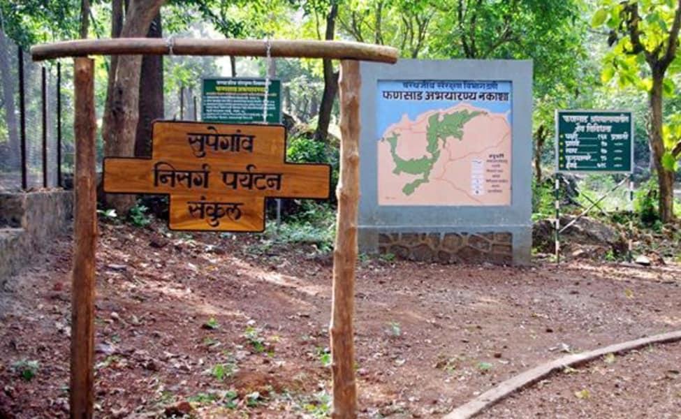 Phansad Wildlife Sanctuary Walking Tour Thrillophilia