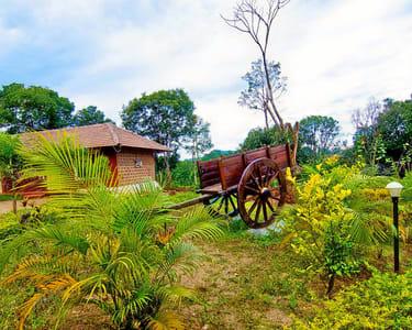 Stay at Nature's Retreat in Sakleshpur