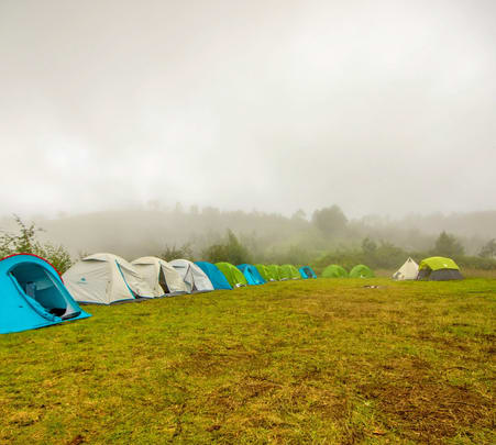 Camping Amidst Pear Orchards, Kodaikanal