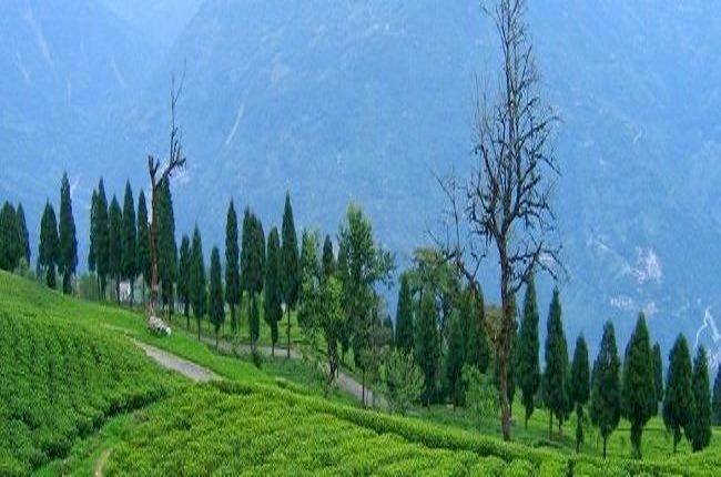 Sikkim_yuksom-dzongri_trek_1.jpg