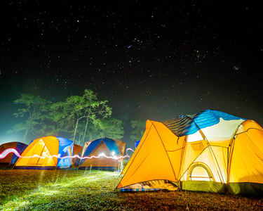 Christmas & New Year Celebration with Sakleshpur Camping