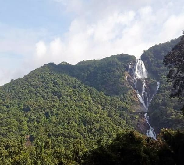 Dudhsagar Waterfalls Trek, Goa