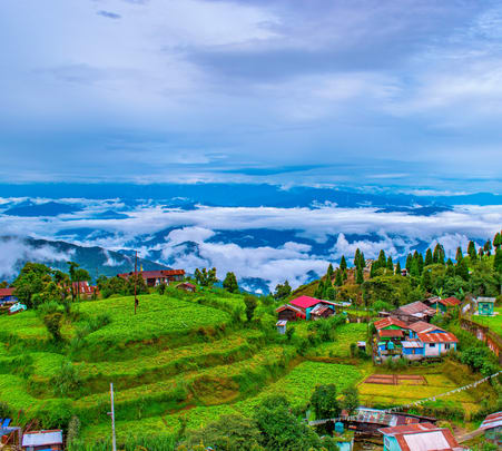 4 Days Darjeeling Sightseeing Tour