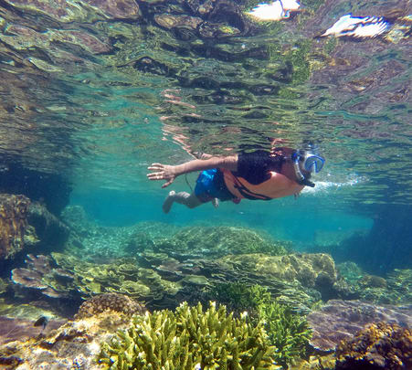 Snorkeling or Diving Experience in Moon Bay from Kota Kinabalu