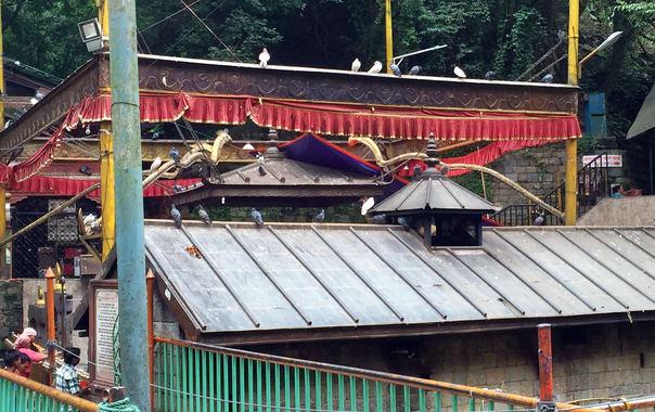 Dakshin_kali_main_temple.jpg