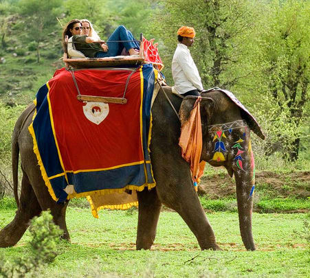 Elephant Safari in Amer Fort, Jaipur