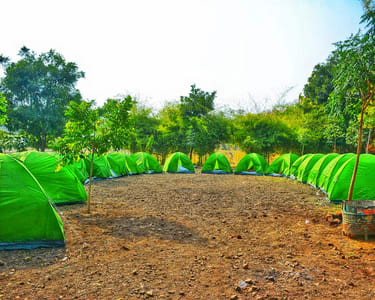Overnight Camping with Activities at Pench