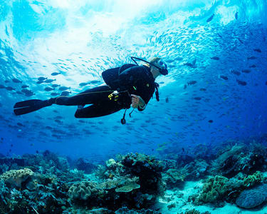 Scuba Diving in Dubai - Flat 12% off