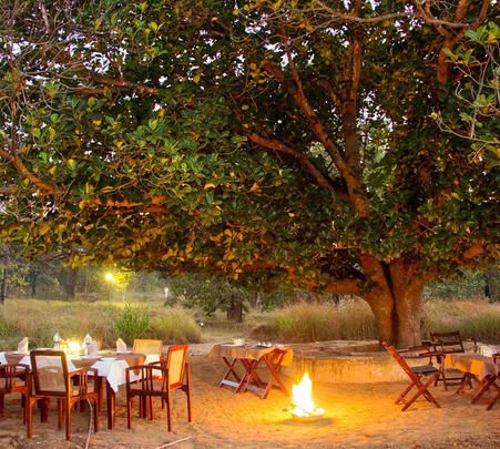 Adventure Resort Stay in Kanha National Park