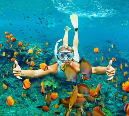 Snorkeling and Bat Island Trip in Goa - Flat 27% Off