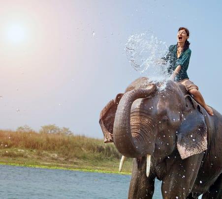 Elephant Ride in Bali Flat 10% off