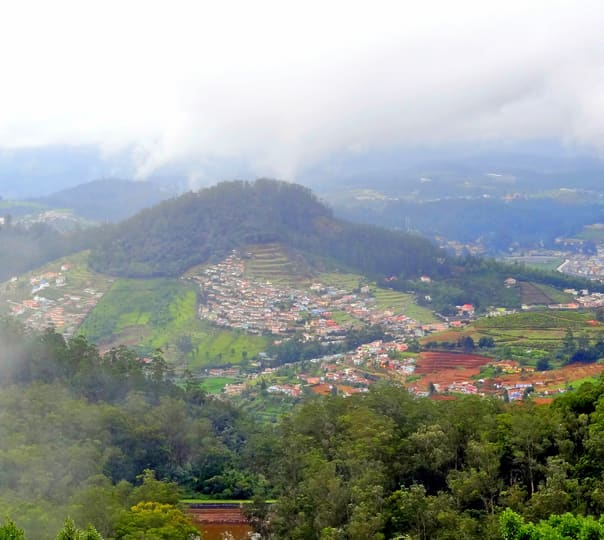 Ooty and Coonoor Day Tour