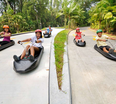 Ticket to Luge and Skyride in Singapore - Flat 30% off