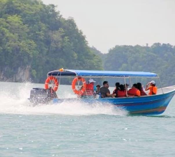 Mangrove Cruise and Swimming Day Tour in Langkawi, Malyasia