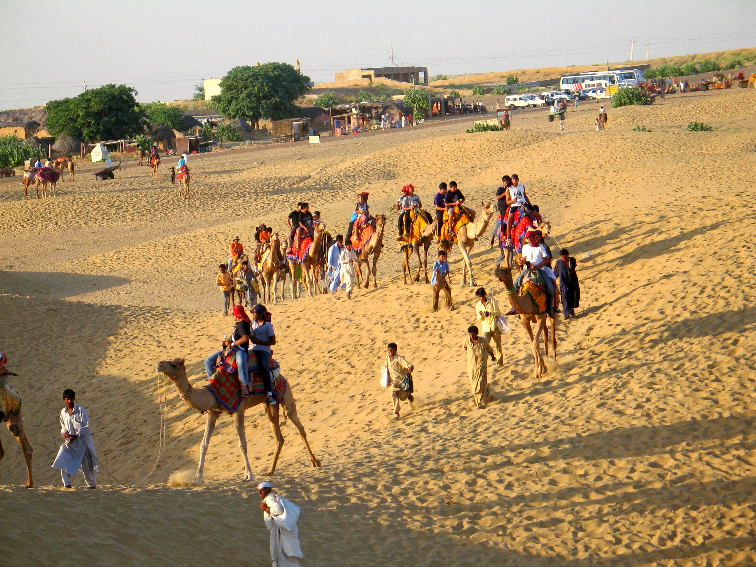 1475762008_pushkar_camel_safari_tours.jpg