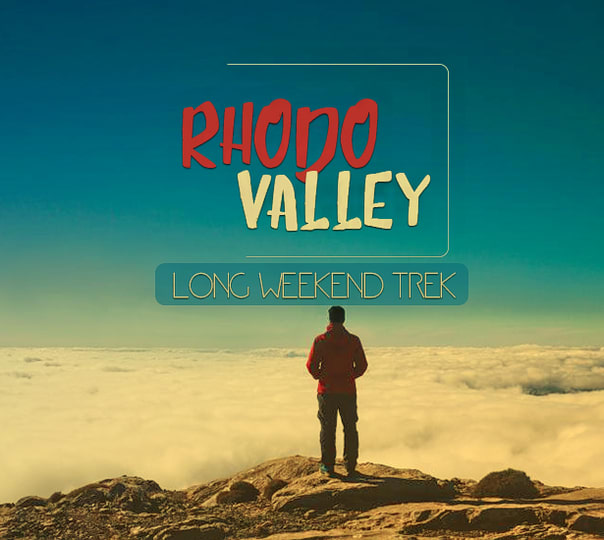 Long Weekend Trek to Rhodo Valley