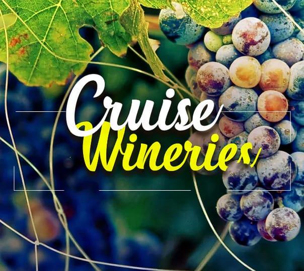 Wine Tour in Bangalore