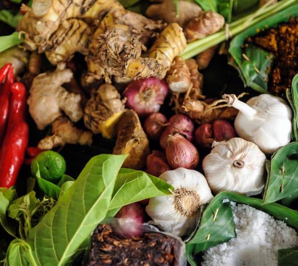 Spice Farm Visit in Goa