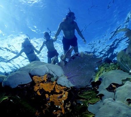 Snorkeling Trip, Kochi