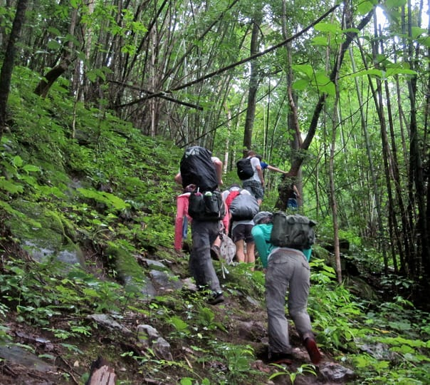 2 Day Jungle Trekking & Camping Package