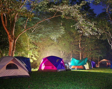 Dense Forest Camping in Panna, Jabalpur