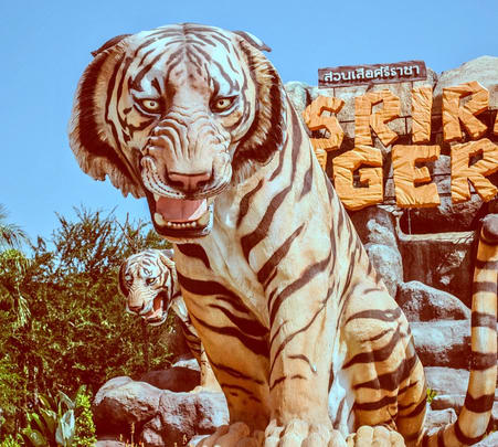 Sriracha Tiger Zoo Ticket, Pattaya Flat 20% off
