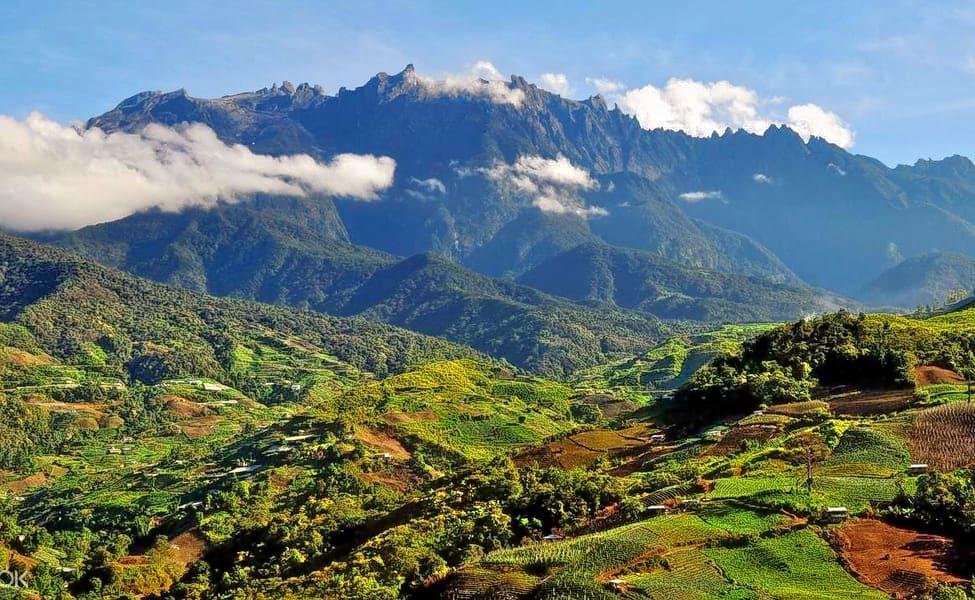 Kinabalu Park & Poring Hot Spring Tour, Sabah @ Flat 15% Off