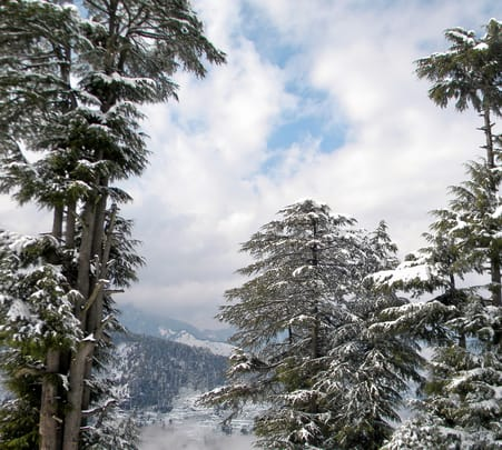 Nag Tibba Trek For 3 Days