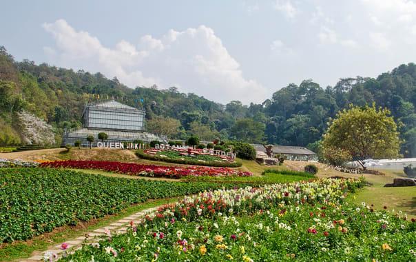 1554892518_queen-sirikit-botanic-garden-chiang-mai-glass-house-complex.jpg