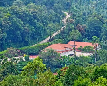 Luxury Homestay Amidst Coffee Plantations in Chikmagalur