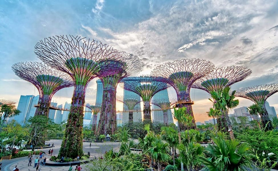 Combo Gardens By The Bay With Marina Bay Sands Skypark \u0026 Singapore River  Cruise