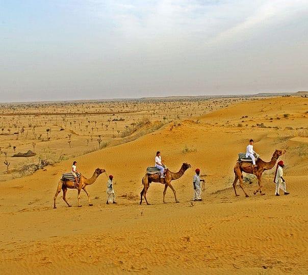 Camel Safari and Camping near Bikaner