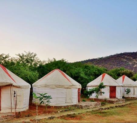 Sariska Camping Experience