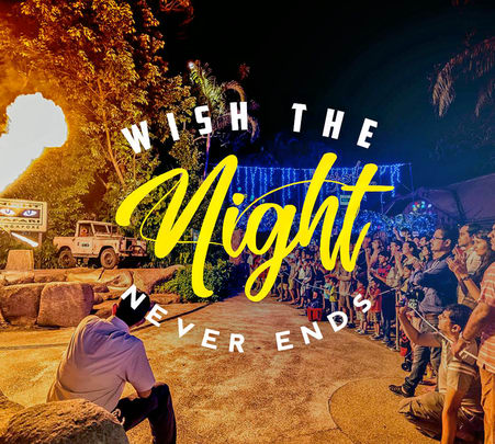 Night Safari in Singapore- 40% off