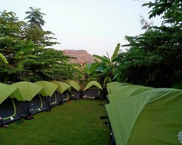Wildnwoods Nature Camp Sakleshpur, Book & Save 27%