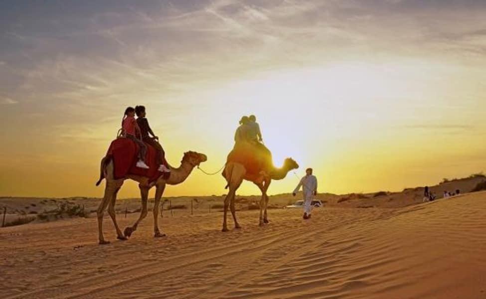 Camel safari in dubai thrillophilia camel safari in dubai altavistaventures Choice Image