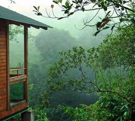Stay in Wooden Chalets at Misty Mountain Resort, Idukki, Kerala