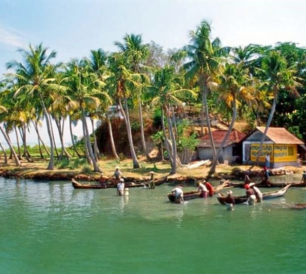 Eco Tour: Best of Kerala