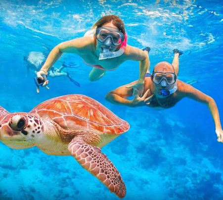 Snorkeling in Mirissa - Flat 18% off
