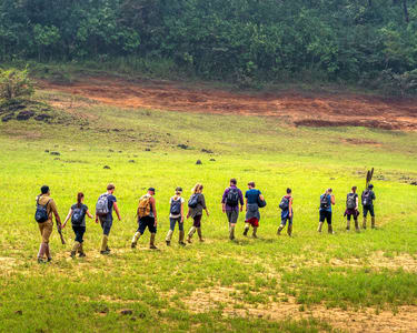 Tiger Trail Trekking and Camping, Periyar Wildlife Sanctuary