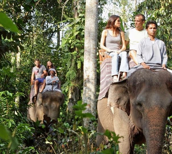 Elephant Ride at Ubud in Bali