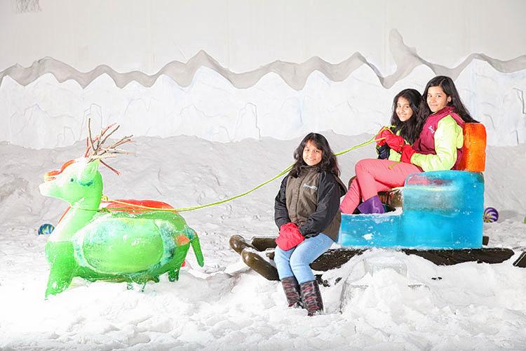 1487833090_snowcity_images_100.jpg