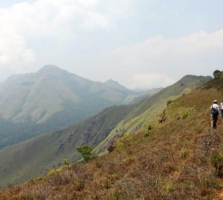 Tadiandamol Trek and Nagarhole National Park Safari