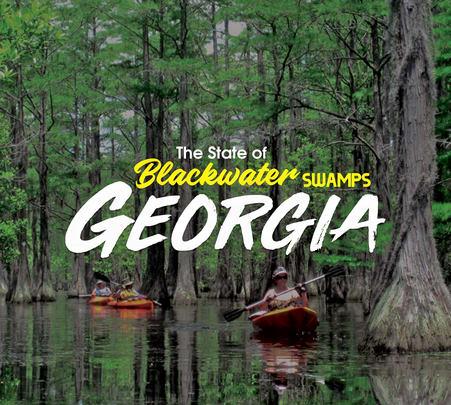 Beautiful Georgia with Wine Tour
