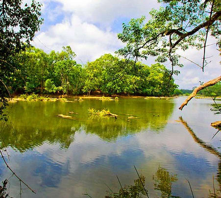 Fishing in Coorg