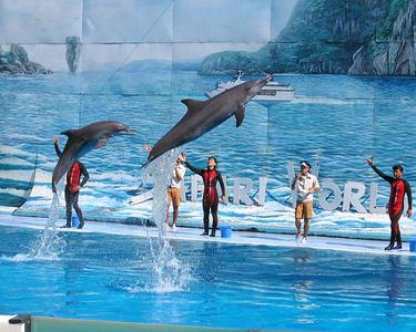 Safari World Tour, Bangkok - Flat 30% off